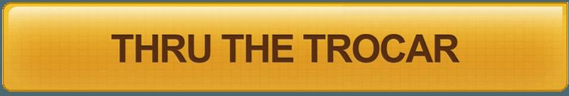 Thru The Trocar